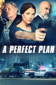 A Perfect Plan (2020)
