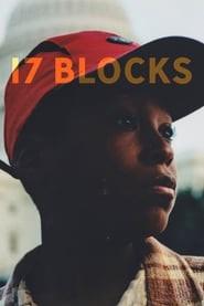 17 Blocks (2019)